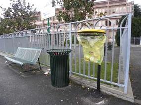 Poubelles de tri sélectif installées devant la cité scolaire